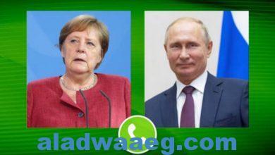 صورة بوتين وميركل يدعوان إلى الحفاظ على الذاكرة التاريخية عن أحداث حقبة الحرب المأساوية