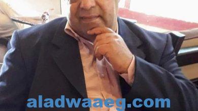 صورة أبو العريف في زماننا  .. بقلم/السيد شحاتة