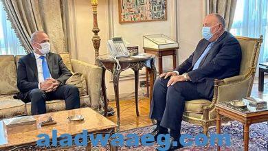 صورة خلال لقائه نائب رئيس المجلس الرئاسي الليبي.. وزير الخارجية يؤكد استمرار مصر في دعم كافة جهود الاستقرار في ليبيا.