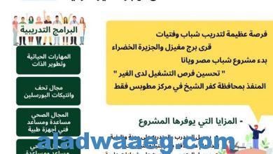 صورة شباب مصر ويانا  ندوة لمؤسسة ويانا الدولية مع جهاز تنمية المشروعات ..