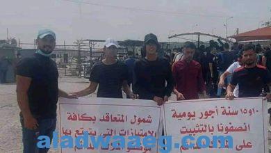 صورة موظفو عقود قرار 315 أمانة بغداد يطالبون الكاظمي بصرف مستحقاتهم